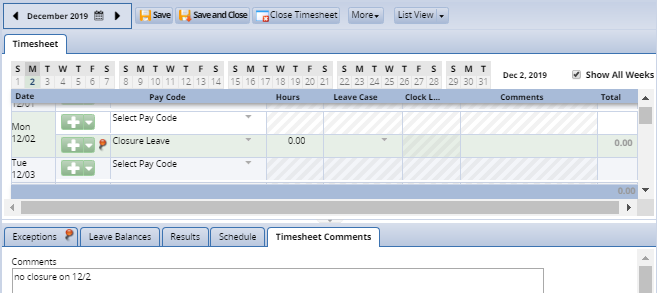 timesheet showing closure leave removed and comments entered