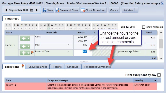 hours column highlighted and timesheet comments tab shown