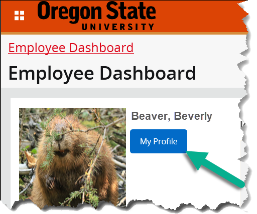 employee dashboard with my profile button highlighted
