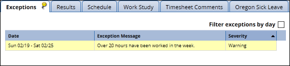 over 20 hours worked exception on the timesheet in the exceptions tab
