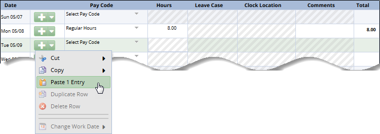 pasting row or rows in the timesheet