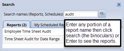 report search options