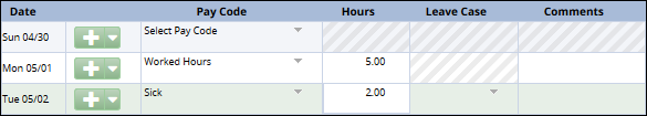 enter the number of hours taken in the hours column for pay code selected